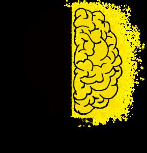 Gehirnwellen messen