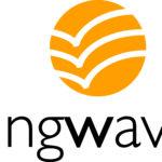 wingwave Methode