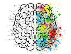 Gehirnhälften synchronisieren