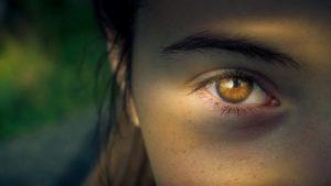 Fokus Frau
