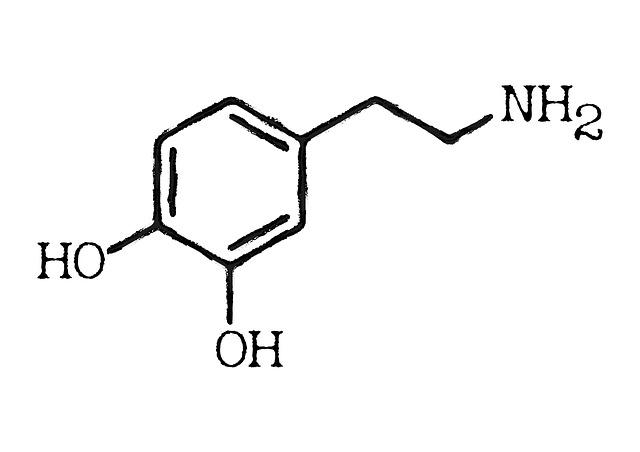 Dopamin Fasten